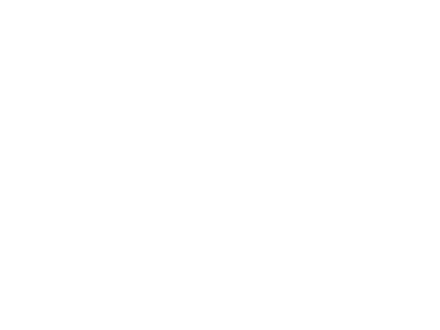 Minnesota Ice